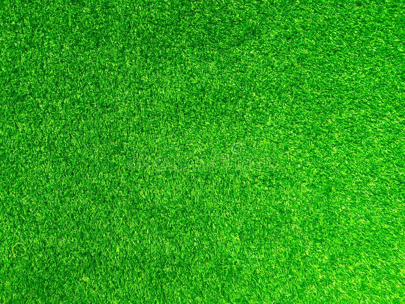 Green grass texture use as natural background. Wallpaper for design artwork royalty free stock photography