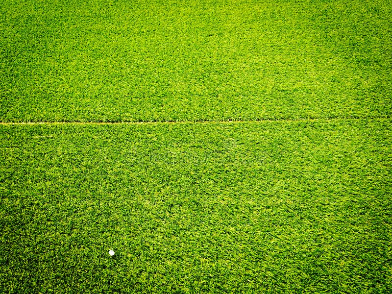 Green grass texture use as natural background. Wallpaper for design artwork stock image