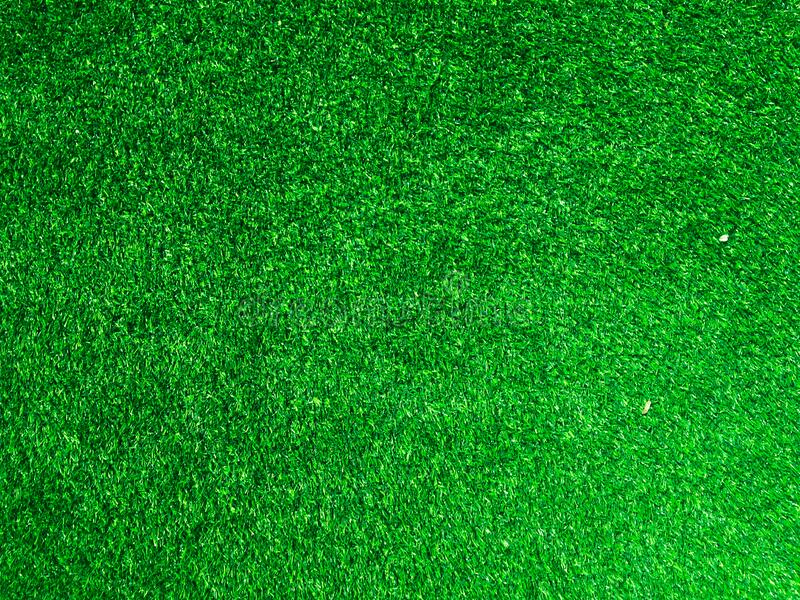 Green grass texture use as natural background. Wallpaper for design artwork royalty free stock photo