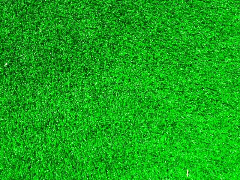 Green grass texture use as natural background. Wallpaper for design artwork royalty free stock images
