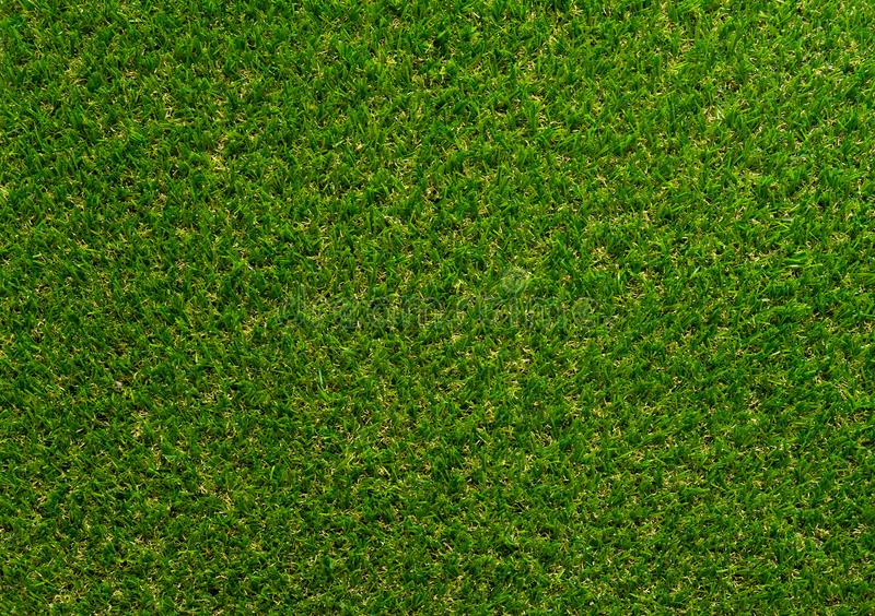 Green grass textured background for golf sport and soccer sport. royalty free stock photos
