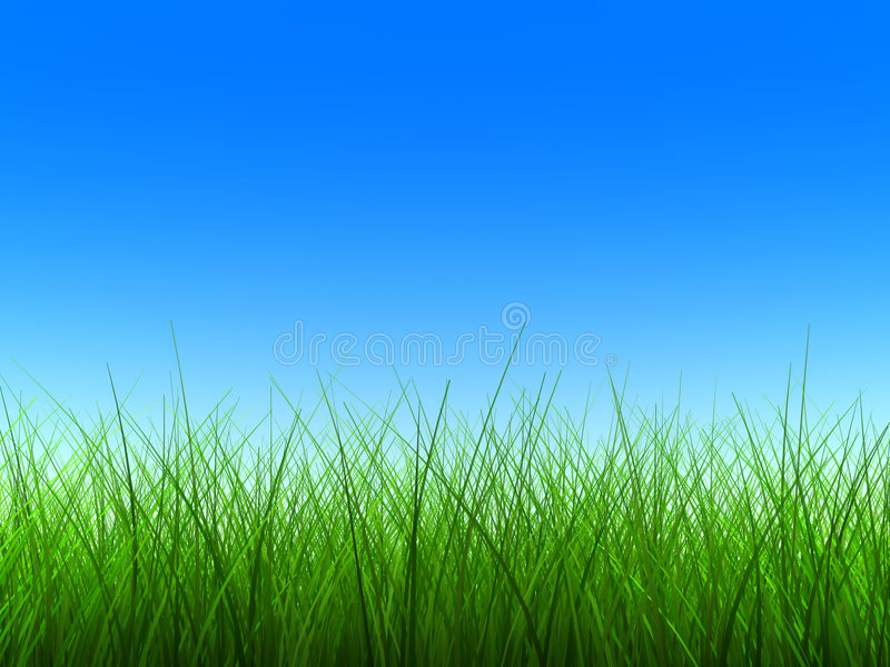 Download Green Grass Thin Stock Photography - Image: 3231782
