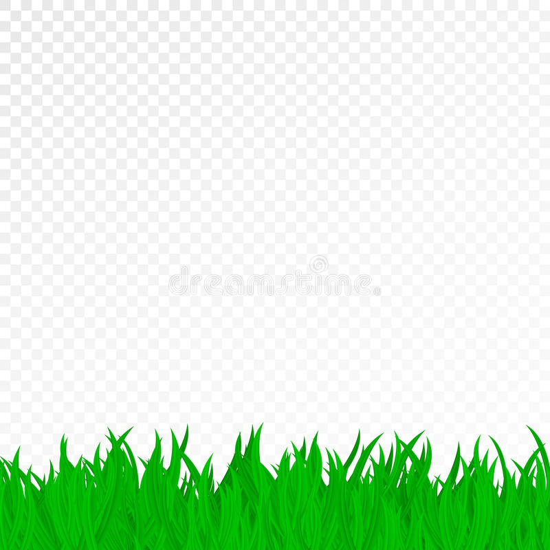 Green Grass On A Transparent Background. Pure Nature. Template For ...