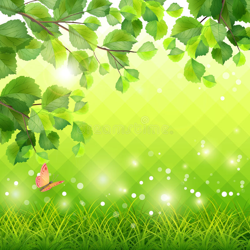 Green Grass Tree Branch Butterfly Background stock illustration