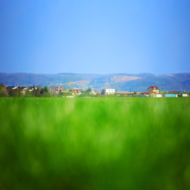 Green grass. Under blue sky royalty free stock photo