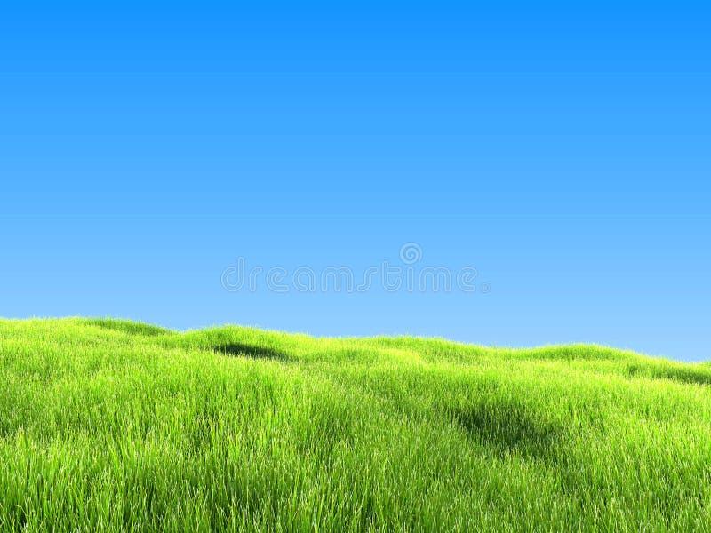 Green Grass Under Clear Blue Sky vector illustration