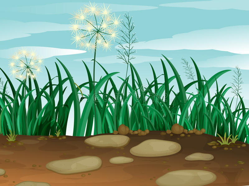 Green grass under the clear blue sky royalty free illustration