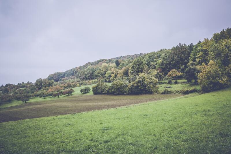 Green Grass Under Grey Clouds during Daytime royalty free stock image