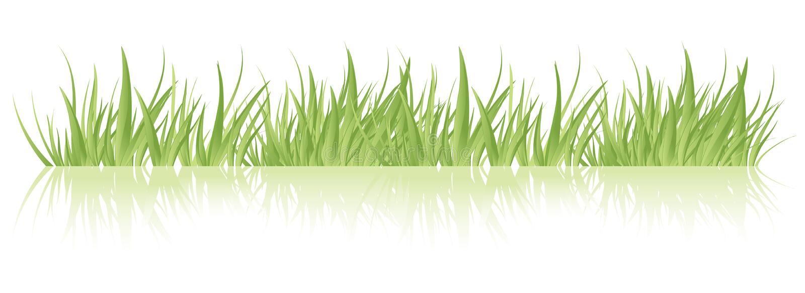 Download Green grass vector stock vector. Image of long, natural - 9509286