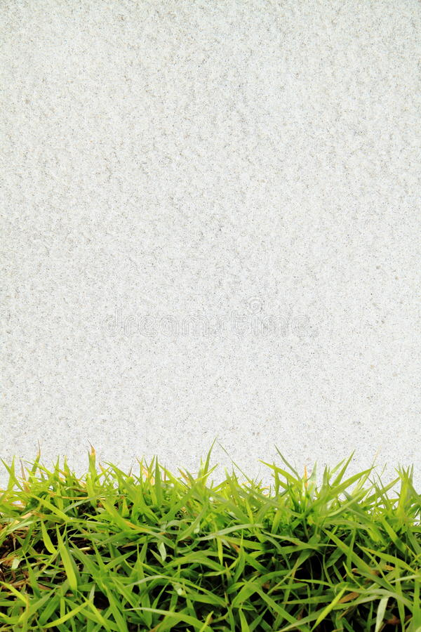 Download Green grass and white sand stock photo. Image of lawn - 16521372