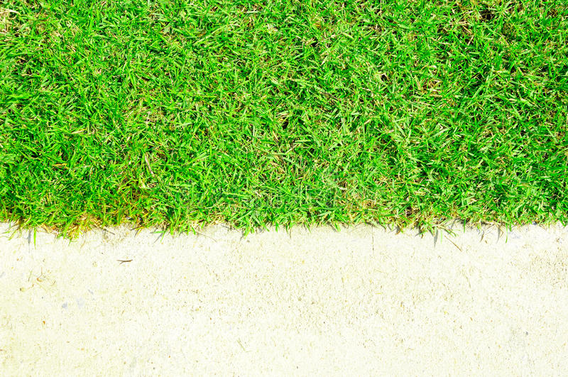 Download Green grass and white sand stock image. Image of clean - 25333707