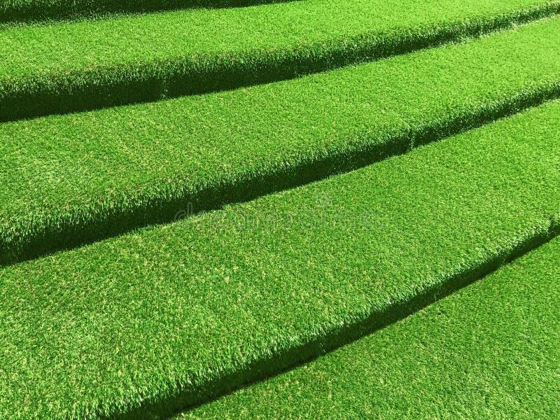 Green grasses stairway interior garden. Green grasses stairway interior design royalty free stock images