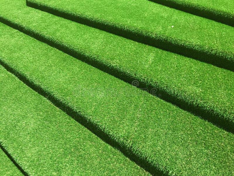 Green grasses stairway interior garden. Green grasses stairway interior design royalty free stock photo