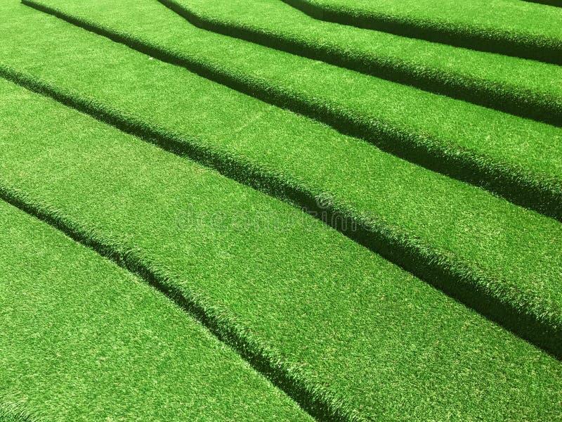 Green grasses stairway interior garden. Green grasses stairway interior design stock images
