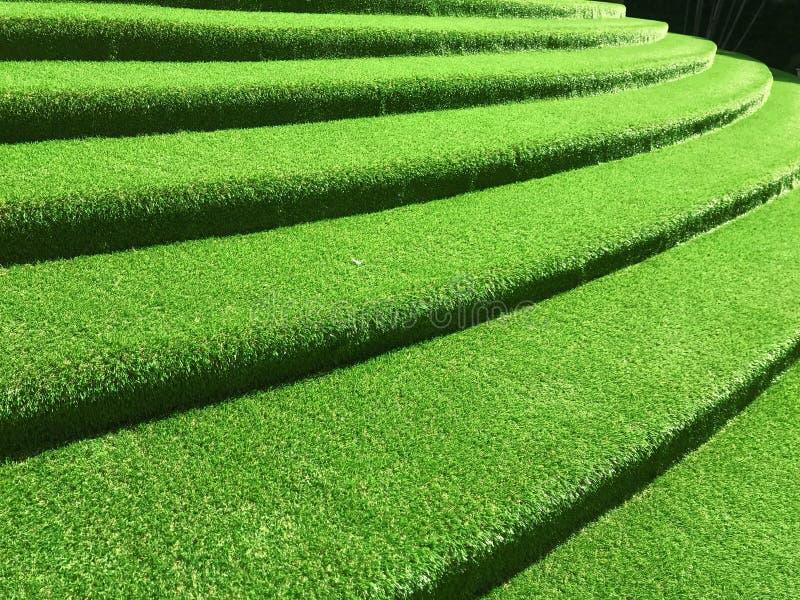 Green grasses stairway interior garden. Green grasses stairway interior design stock photos