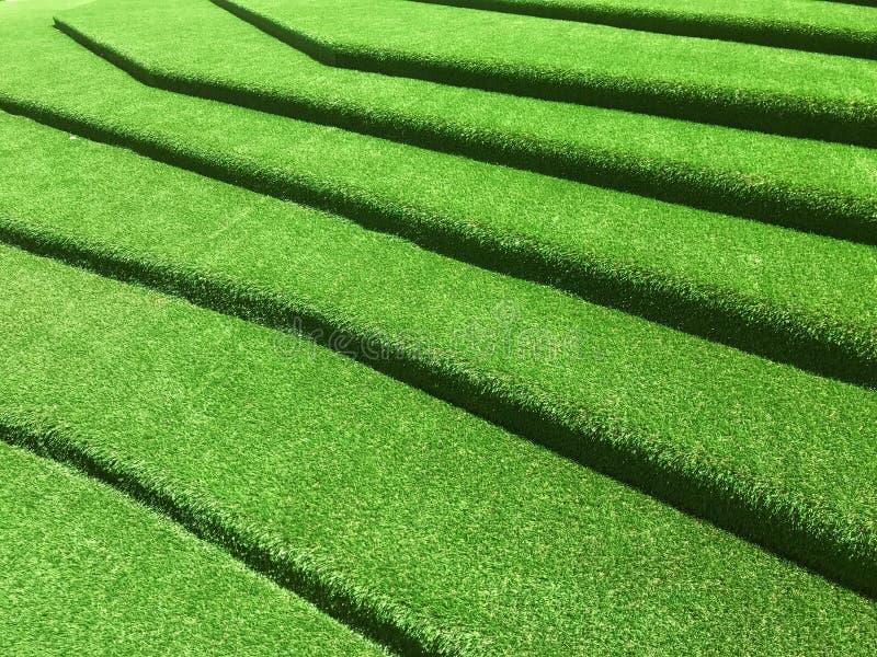 Green grasses stairway interior garden. Green grasses stairway interior design royalty free stock image