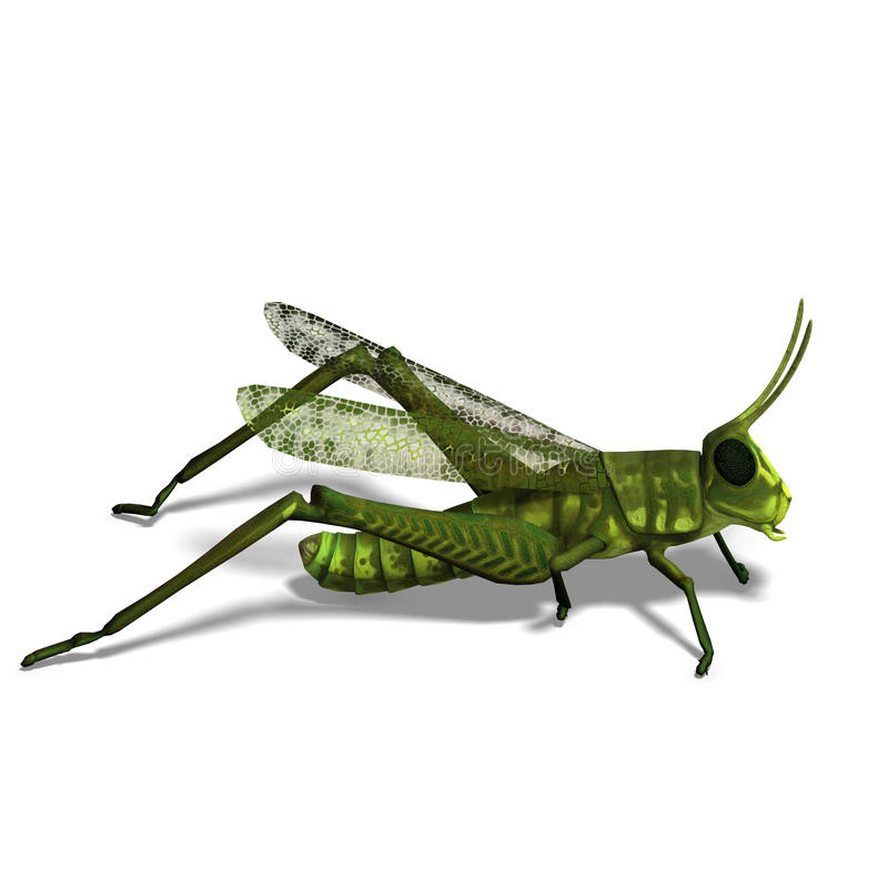 Green grasshopper. 3D rendering of a green grasshopper with clipping path and shadow over white stock illustration