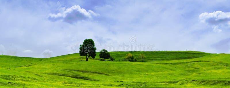 Green grassland and clouds