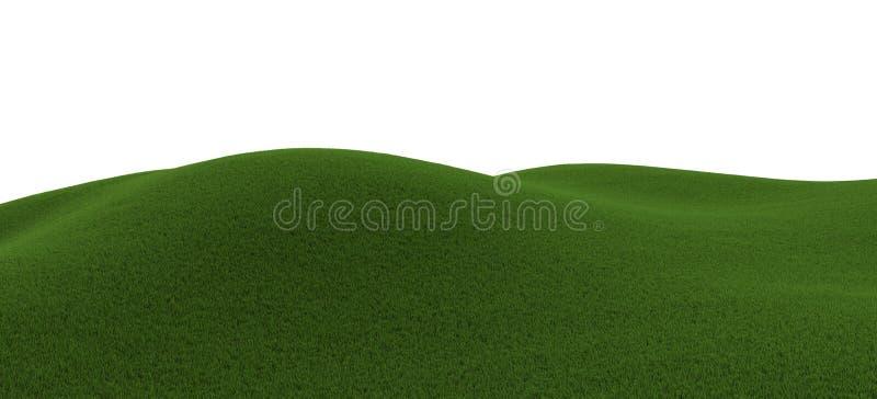 Green grassy hill vector illustration