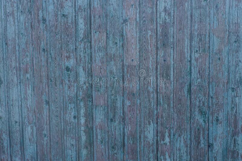 Green gray wooden texture from old wide shabby boards on the fence. Wall stock photo