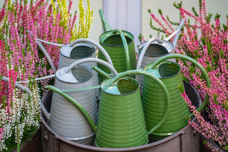 Green and grey metal watering cans. stock photos