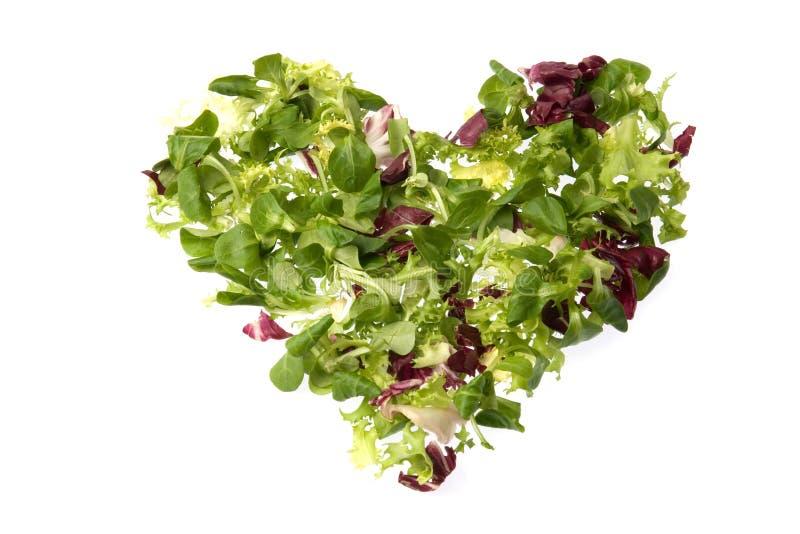 Green heart royalty free stock photography