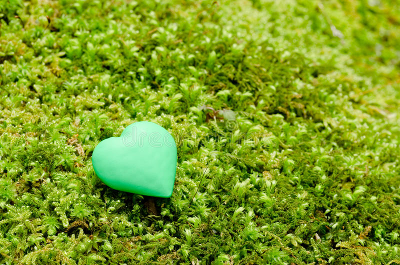 Download Green heart object stock image. Image of still, object - 24259355