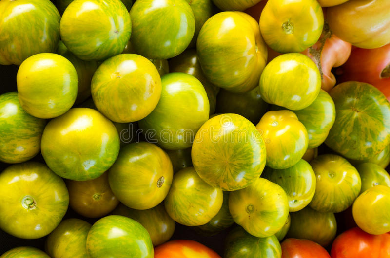 Green heirloom tomatoes on display stock images