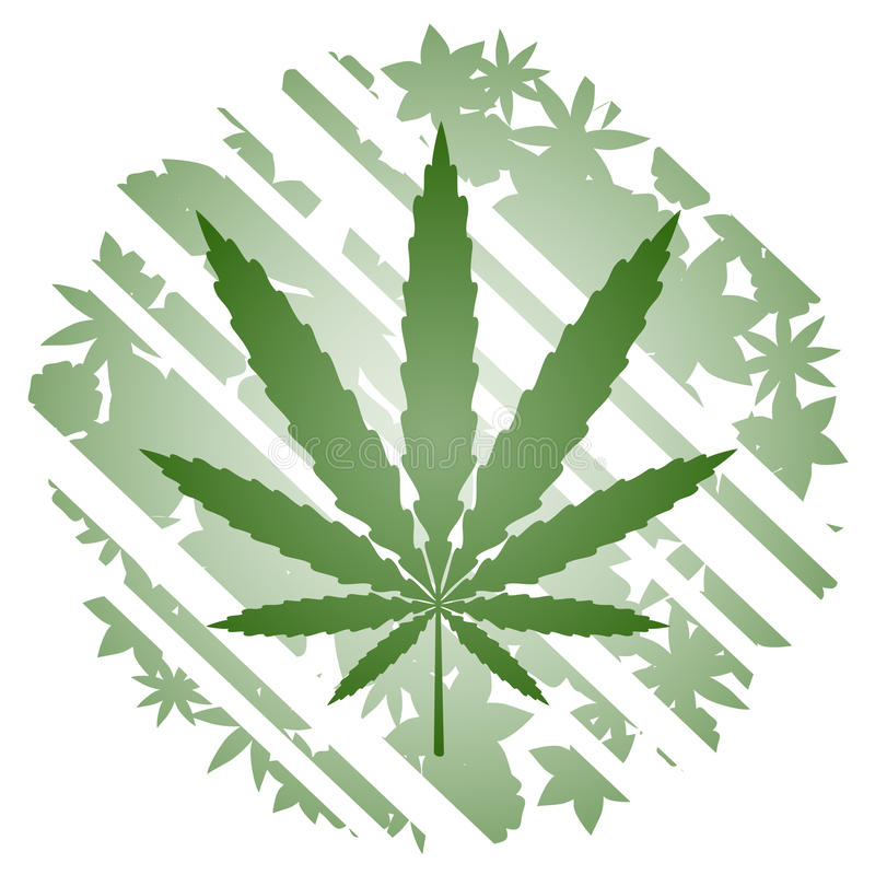 Green herbal vector illustration