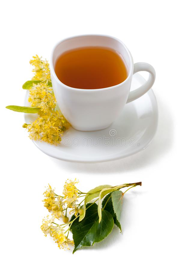 Green herbal tea with linden flowers isolated on white backgrou royalty free stock photography