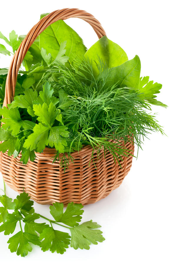 Download Green Herbs In Braided Basket Stock Photo - Image: 27588108