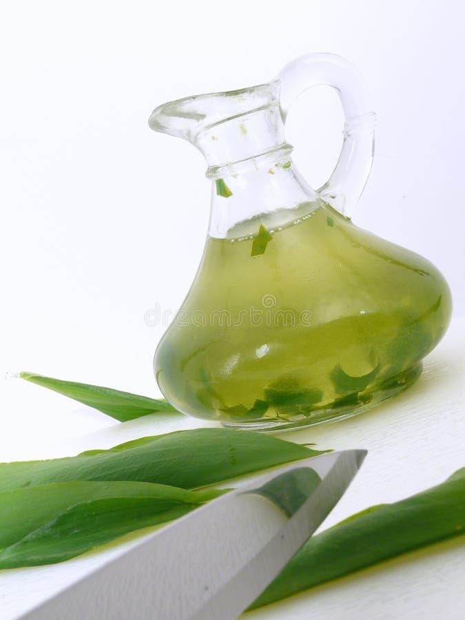 Free Green Herbsoil Stock Photos - 4853403