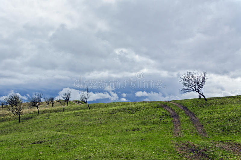 Download Green hill stock photo. Image of country, landscape, hill - 28218668
