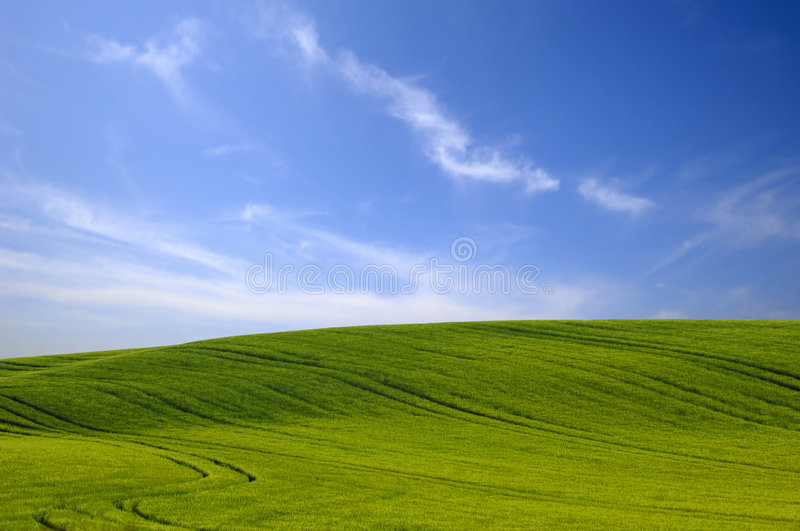 Green hill and blue sky. stock images