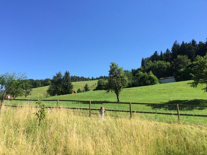 Green hill and blue sky royalty free stock photography