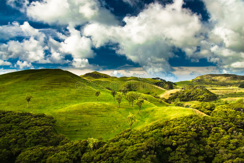 Download Green hills stock image. Image of meadow, wilderness, zealand - 6659093