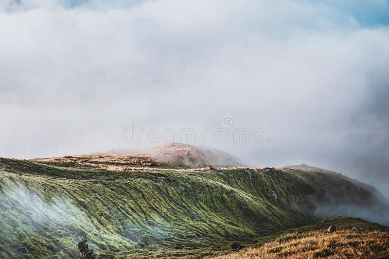Green Hills Covered With Fog royalty free stock photo