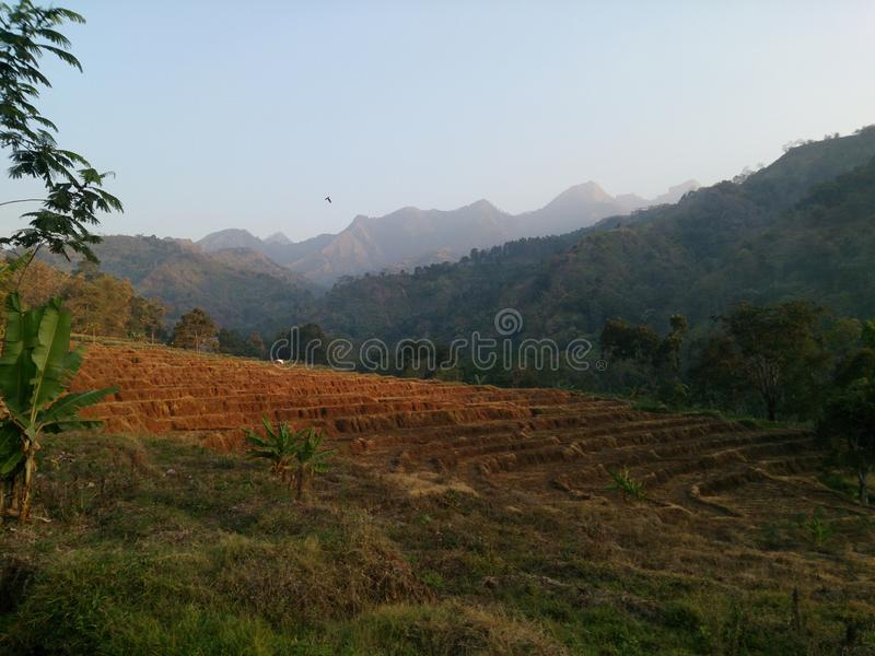 Green Hills and Gogreen Day. Beautiful green hill in morning. Photos taken in a village in Indonesia. Beautiful country and full of beautiful scenery stock photography