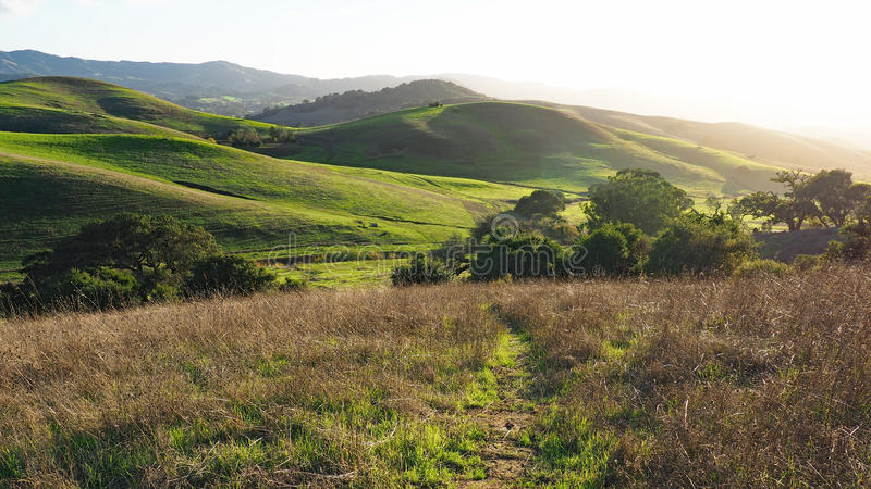 Green Hills of Sonoma County. Early rains bring autumn green to the hills outside Petaluma, California. A beautiful fall afternoon at Helen Putnam State Park in royalty free stock photos