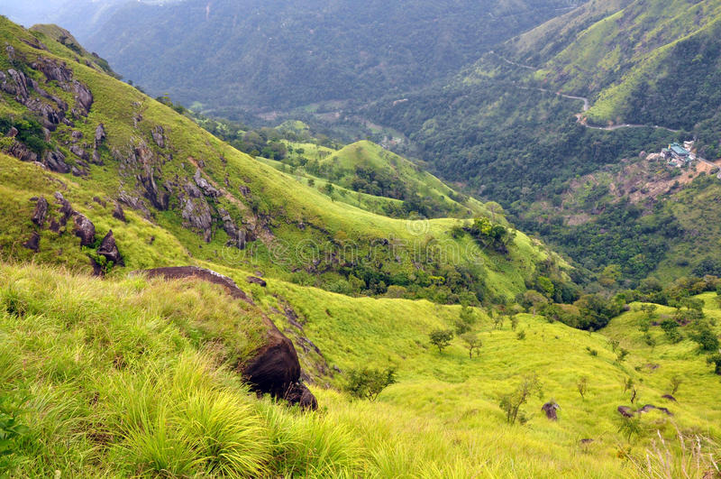 Green hills of tea country, Sri Lanka royalty free stock photography