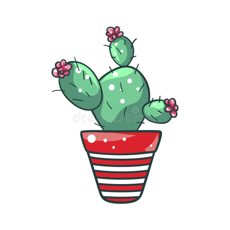 Free Green Home Cactus In A Pot, Natural Houseplant Stock Photography - 170113532