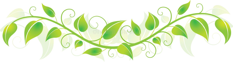 Green Horizontal Leaves stock illustration
