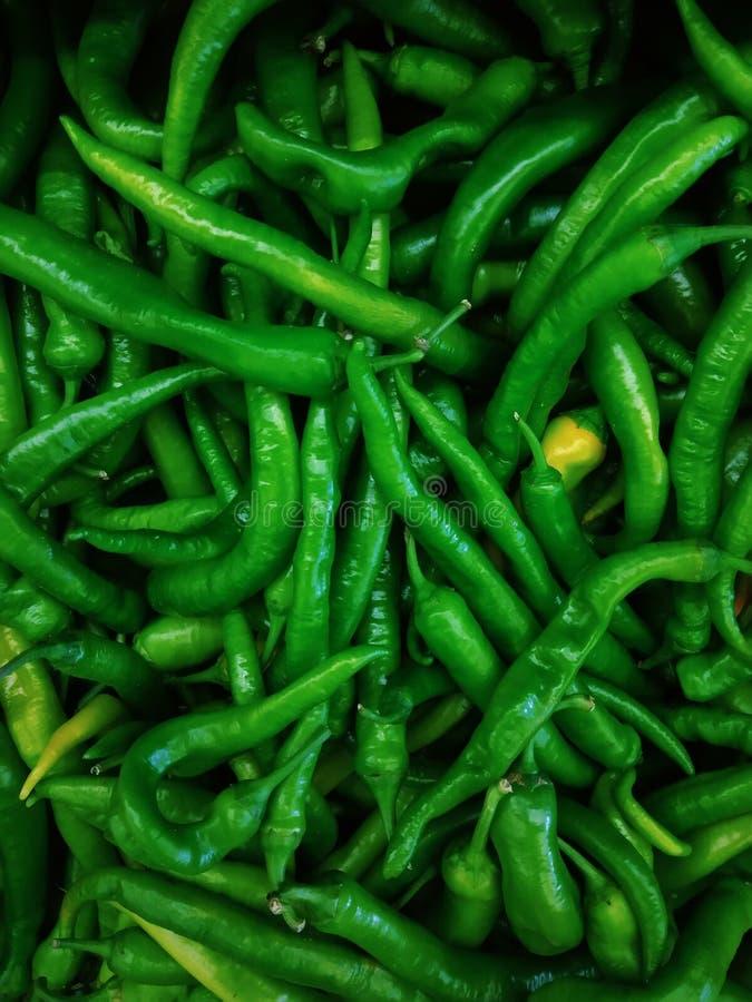 Green hot pepper. Fresh green hot pepper use for cook stock photos