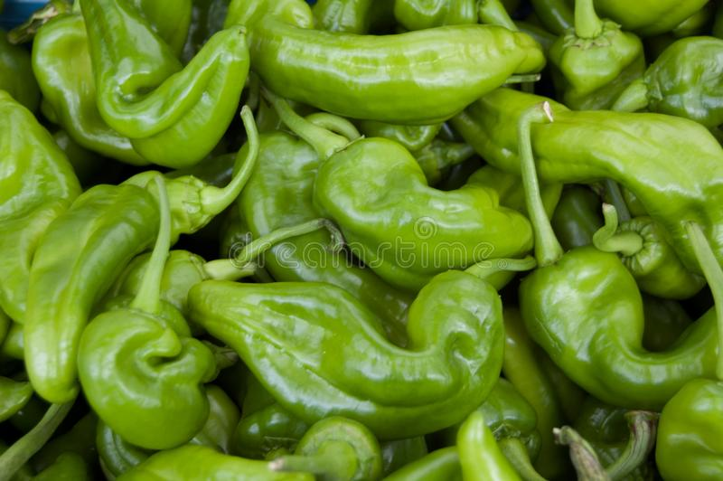 Green hot pepper Spice background. On a market royalty free stock photography