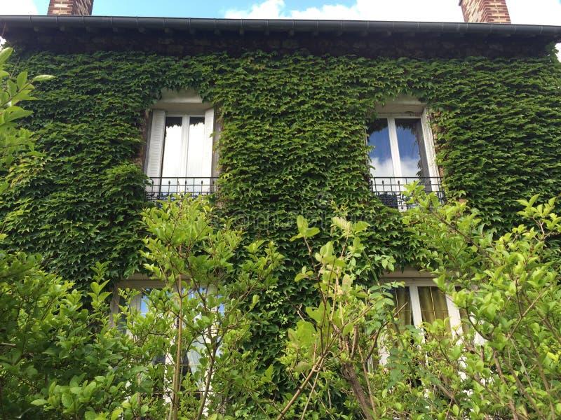The Green House stock photos