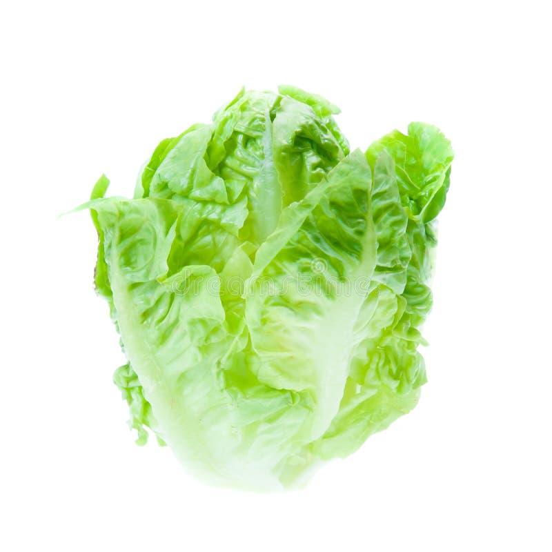 Green Iceberg lettuce. On White Background royalty free stock image