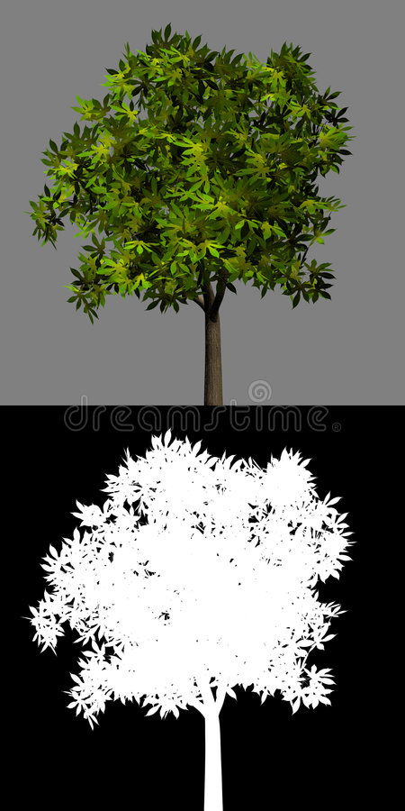 green isolated mask plant tree 皇族释放例证