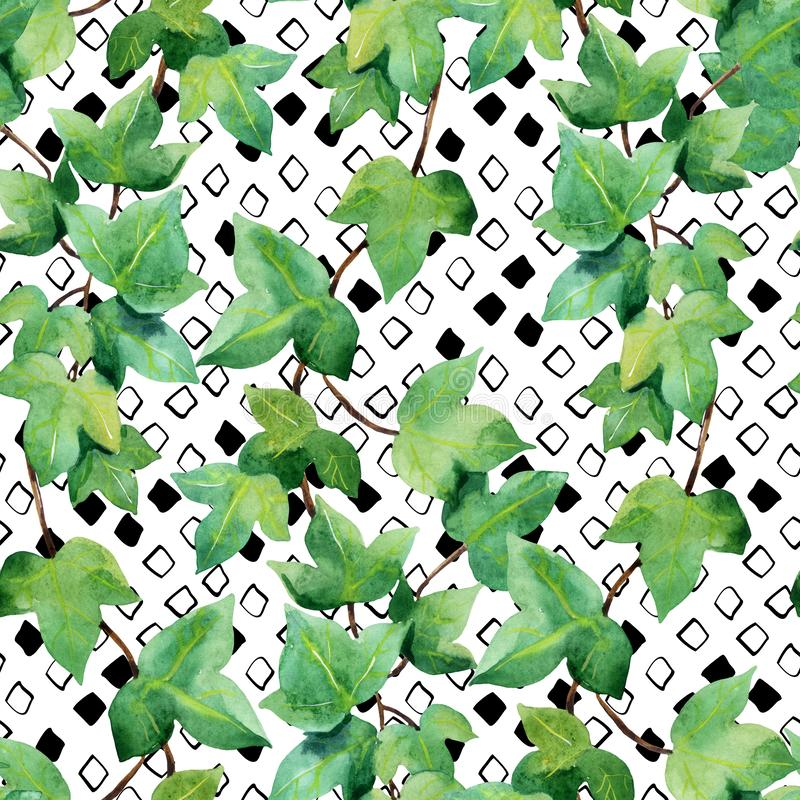 Green ivy branches on rhombic background. Watercolor ivy seamless pattern. Green ivy branches on rhombic background. Floral and geometric shapes. Hand painted vector illustration