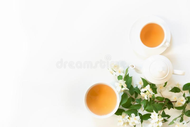 Green jasmin tea and jasmine flowers, cup of green tea on white background. Top view. Copy space. Green jasmin tea and jasmine flowers, cup of green tea on royalty free stock images