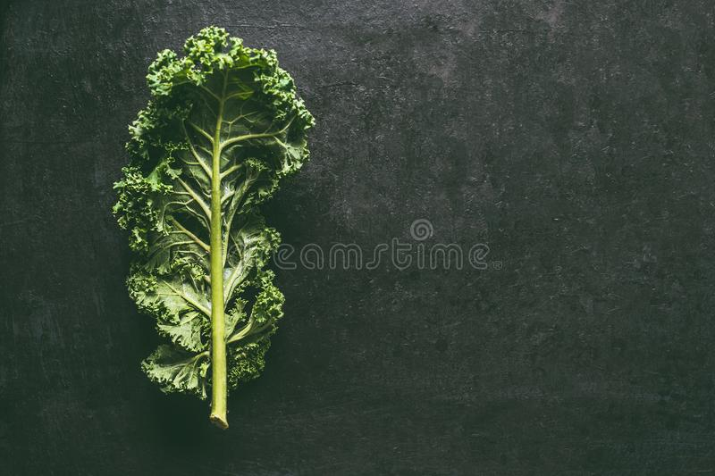 Green kale leaf on dark background, top view with copy space. Healthy detox vegetables . Clean eating and dieting concept. Top royalty free stock image